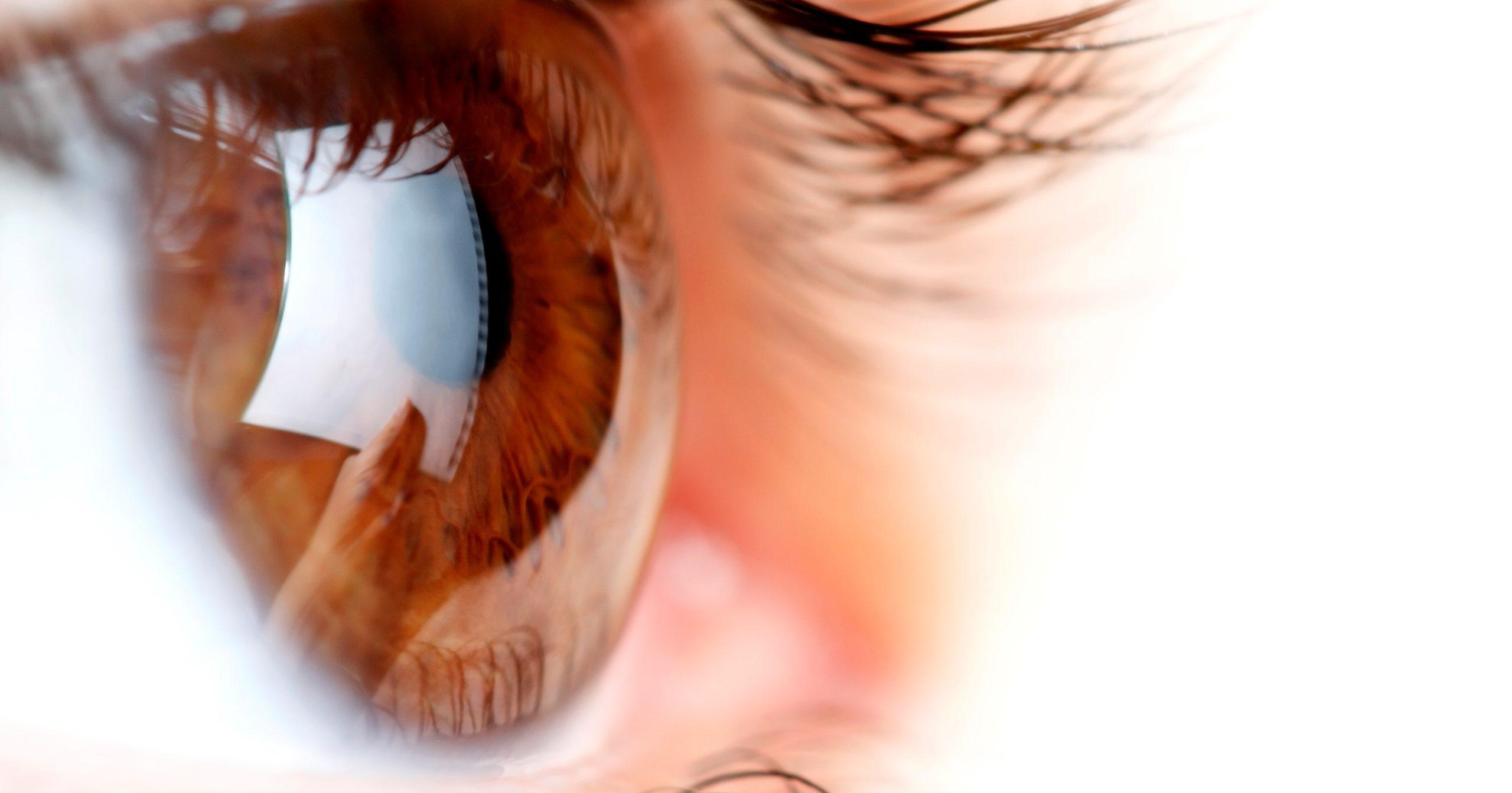 interior Trachoma banner image